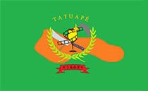 Bandeira do bairro do Tatuap�